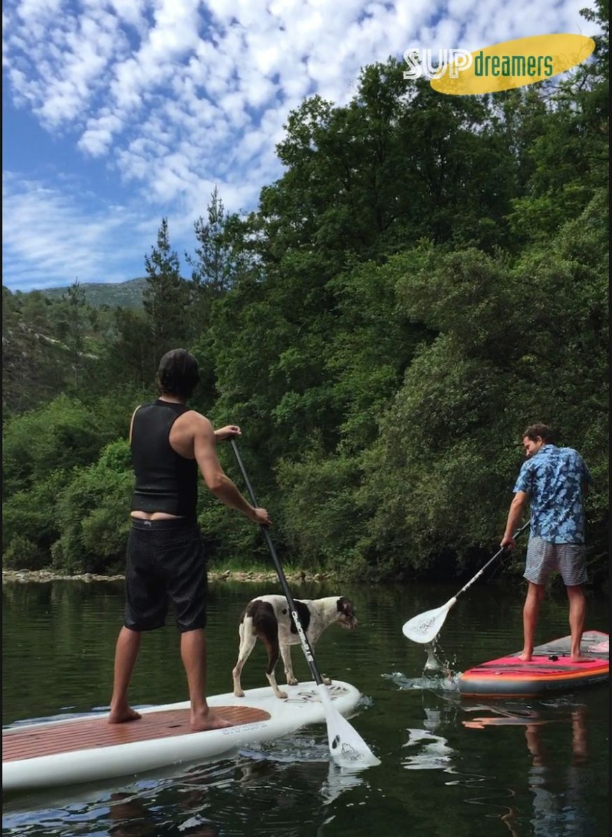 SUP, Cantabria, Paddle Surf, Starboard, SUP river, SUP rio, Stand Up Paddle, SUP dog